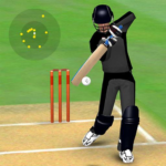 Smashing Cricket – a cricket game like none other MOD APK Unlimited Money 2.9.9