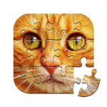 Unlimited Puzzles – free jigsaw for kids and adult MOD APK Unlimited Money 2.14.5