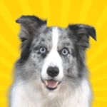 Real Pets by Fruwee MOD APK Unlimited Money 249