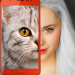 Kittens what cat are you prank MOD APK Unlimited Money 2.7